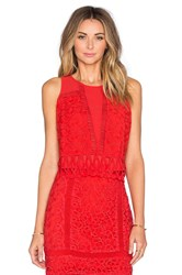 Greylin Melrose Lace Crop Top Red
