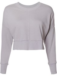 Daniel Patrick Cropped Sweatshirt Pink Purple