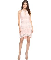 Adelyn Rae Fitted Lace Dress Light Pink Women's Dress
