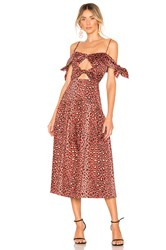 Rebecca Taylor Leopard Bow Dress Brown
