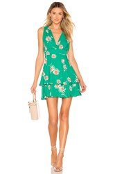 Bb Dakota Garden Strolls Dress Green