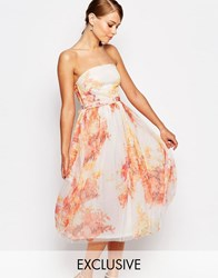 True Violet Tulle Prom Midi Dress In Fall Floral Print Fall Floral