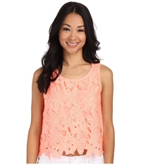 Gabriella Rocha Floral Embroidered Laser Cut Crop Top Grapefruit Women's Clothing Multi