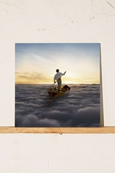 Urban Outfitters Pink Floyd The Endless River 2Xlp Black