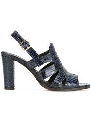 Tila March 'Minnesota' Sandals Blue
