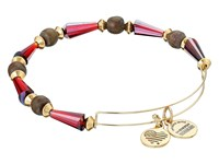 Alex And Ani Depths Of The Wild Seeds Of Promise Expandable Bangle Gold Pomegranate Bracelet