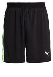 Puma Sports Shorts Black Green Gecko