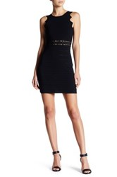 Endless Rose Scalloped Bodycon Dress Black