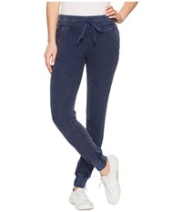 Allen Allen Box Thermal Cuff Bottom Skinny Pants Lapis Casual Pants Navy