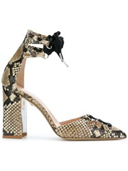 Just Cavalli Snake Effect Court Pumps Brown