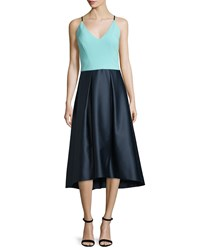 Phoebe Couture Sleeveless Fit And Flare Combo Dress