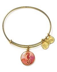 Alex And Ani Art Infusion Seahorse Expandable Wire Bangle Gold