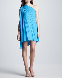 Halston Heritage One Shoulder Pleated Dress 4