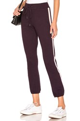 David Lerner Classic Jogger Purple
