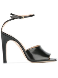 Sergio Rossi Ankle Strap Sandals Black