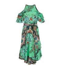 Etro Safari Print Cold Shoulder Dress Female Green