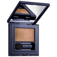 Estee Lauder Pure Colour Envy Defining Eyeshadow Brash Bronze