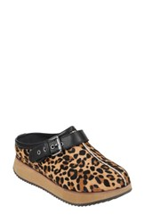 Earth Lyra Buckle Clog Brown Printed Leather