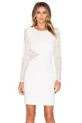 Bcbgmaxazria Jorden Lace Dress Ivory
