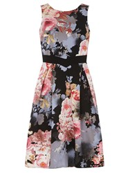 Dorothy Perkins Luxe Floral Prom Dress Multi Coloured