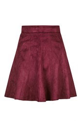 Suede Mini Skater Skirt By Rare Wine