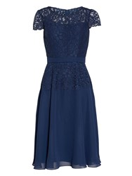 Gina Bacconi Chiffon Dress With Lace Bodice And Scarf Navy