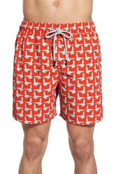 Men's Tom And Teddy Seagull Print Swim Trunks Scarlet Mint
