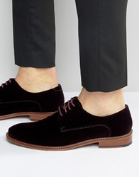 Ted Baker Nierro Velvet Derby Shoes Red