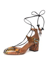 Aquazzura Boheme Snakeskin Feather Tie Pump Amber