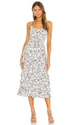 Likely Ariella Dress In White. Jungle