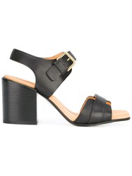 Cotelac Chunky Heel Buckled Sandals Black