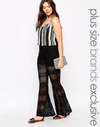 Pink Clove Lace Flare Trousers Black