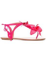 Aquazzura Flower T Bar Sandals Pink Purple