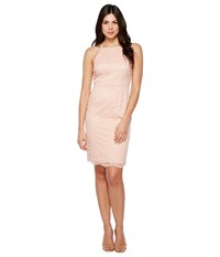 Vince Camuto Lace Bodycon Dress With Trim Peach Women's Dress Orange