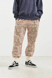 Chums Rider Jogger Pant Assorted