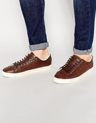 New Look Trainer With Borg Lining Darkbrown