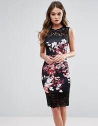 Lipsy Floral Print Pencil Dress With Lace Panels Multi