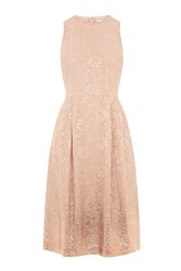 Warehouse Foil Lace Dress Beige