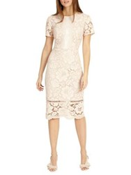 Phase Eight Darena Lace Sheath Dress Cameo