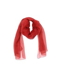 Patrizia Pepe Accessories Oblong Scarves Women