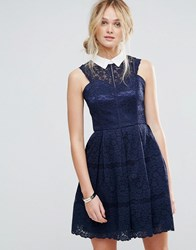 Chi Chi London Structured Lace Skater Dress With Contrast Collar Navy
