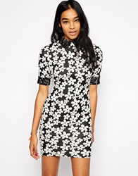 Ax Paris Daisy Print Dress With Lace Trim And Collar Black