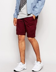 New Look Chino Shorts Burgundy