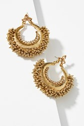 Anthropologie Acorn Hoop Earrings Pearl