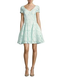 Nue By Shani Solid Fit And Flare Lace Dress Mint