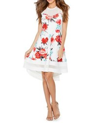 Quiz Floral Fit And Flare Dress Neutral