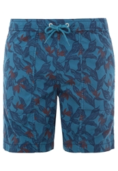 Lightning Bolt New Turtle Swimming Shorts Faience Multicoloured