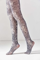 Out From Under Python Shimmer Tight Grey Multi