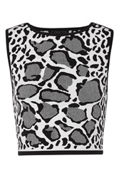 Ohne Titel Reversible Leopard Print Stretch Jacquard Knit Top