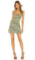 Likely Mini Leopard Constance Dress In Yellow. Yellow Leopard